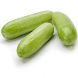 Shinefit Cucumber Seeds