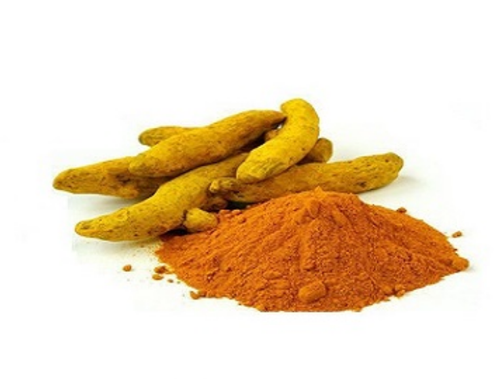 Standardized Botanical Extracts - Turmeric Extract Manufacturer from