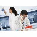 Detergent Formulation Consultancy