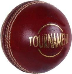 Cricket Leather Ball Tournament