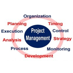 Individual Consultant 1 Month New Project Development Report Services, Pan India, Type Of Industry Business: Food