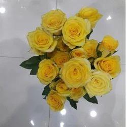 Yellow Rose Flower Bundle
