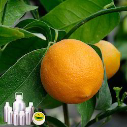 Neroli Co2 Extract Oil