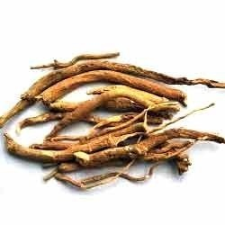 Ashwagandha Extract, Pack Size: 25 Kg