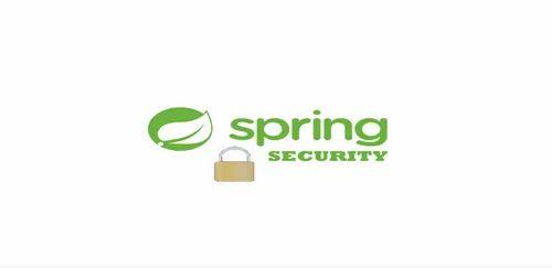 Spring Security, स्प्रिंग पोस्ट in Geeta Bhawan Square, Indore ,  Programmers Point | ID: 21459248973