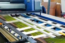 Withintime Frame Multicolor Offset Printing Service, Size: Standard, Promotion & Advertisement