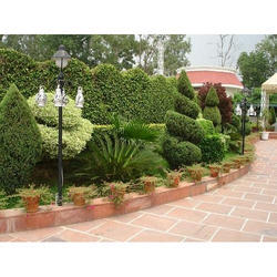 Garden Maintenance and Decoration Services, Local