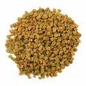 10:1 Common Fenugreek Seed Extract
