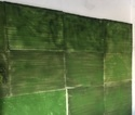 Green Wall For Reception Area