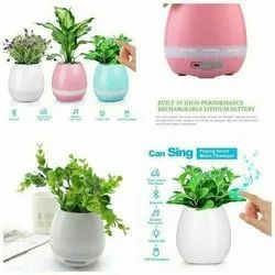 Singing Musical Pot