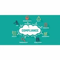 Consulting Firm Corporate Compliance Service