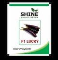 Shine Brand Seeds Hybrid Brinjal Seeds - F1 Lucky, Pack Size: 10gm