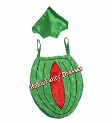 Kids Watermelon Cutout Costume
