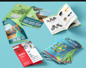 Multi-page Product Catalogue Printing Services