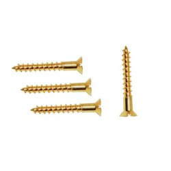 CSK Type Brass Screw
