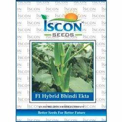 Iscon F1 Hybrid Bhindi Ekta Seeds, Packaging Type: Packet, Packaging Size: 500g