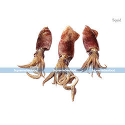 Big Sea Squid, Usage: Restaurant, Household, Mess