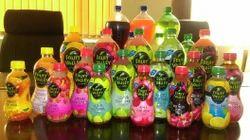 250ml Fruit Valley - Pulp Fruit Drink