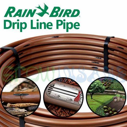 Rainbird Drip Line