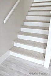 House 2 Home Carpet Flooring