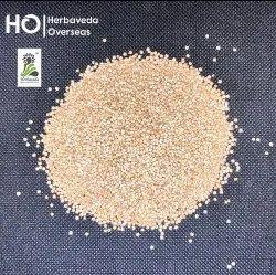 Indian HERBAVEDA Quinoa Seeds Chenopodium Quinoa