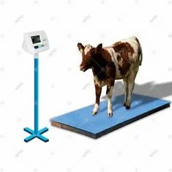 Cow Weighing Scale