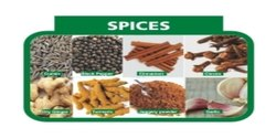 Way2Foods Spices Combo Pack, Packaging Size: 3.3 kg