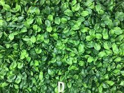 Leaves Vertical Green Artificial Grass