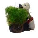 Horse Holding Cart Planter