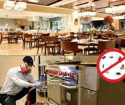 Hotel Pest Control Services