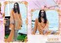 Designer Pakistani Suit Deepsy-Rinnaz-3
