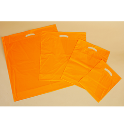 Poly Bags with Gloss