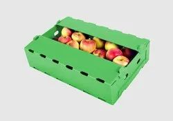 PP Corrugated Fruit Box