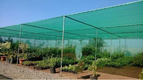 48+Greenhouse Hygiene