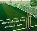 Cricket Turf Pitch