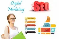 Search Engine Optimization Service in Pan India