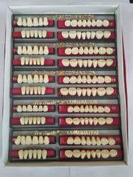 Zero Degree Acrylic Teeth