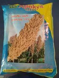 Fodder Sorghum Seeds