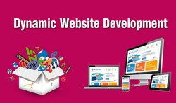 Dynamic Website Development 1 day delivery