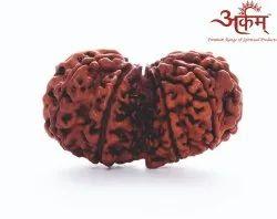 Arkam Gauri Shankar Rudraksha Nepali