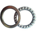Thrust Bearing With Rotating Washer