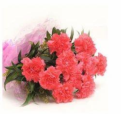 Lovely Carnations Flowers