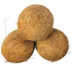 B Grade Small Husked Coconut, Packaging Size: 50 Kg