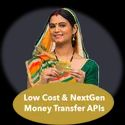 B2b Software With Money Transfer Services