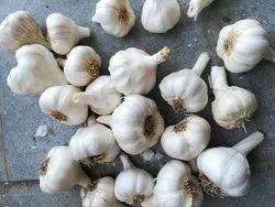 A Grade Fresh Garlic, Garlic Size: 40+, Good