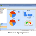 MBA Business And Management Project Reporting Services