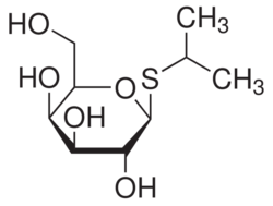 Ortho-Nitrophenyl-Beta-Galactoside