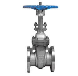 Duplex Stainless Steel Gate Valve
