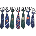 Single Logo School Ties