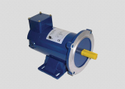 DC Electric Motor